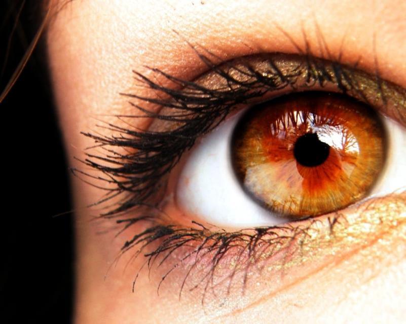 фото янтарных глаз новые