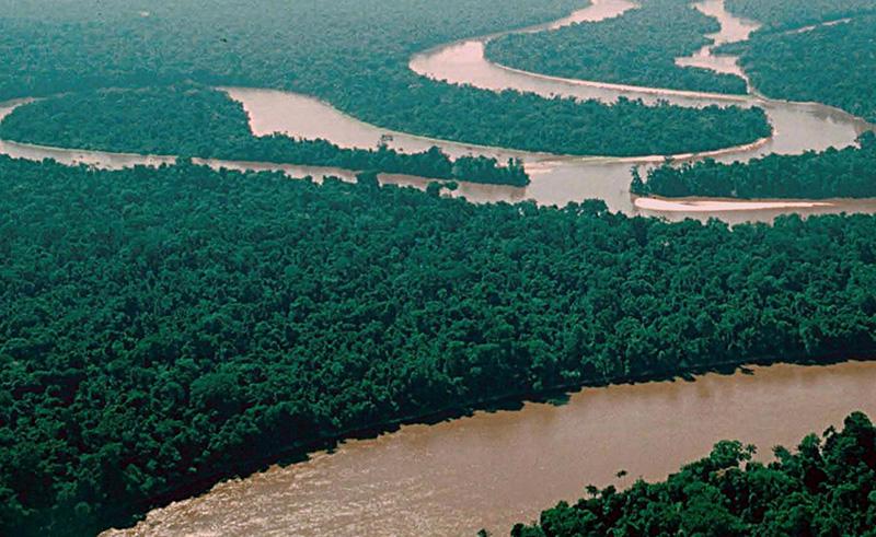 Річка Амазонка