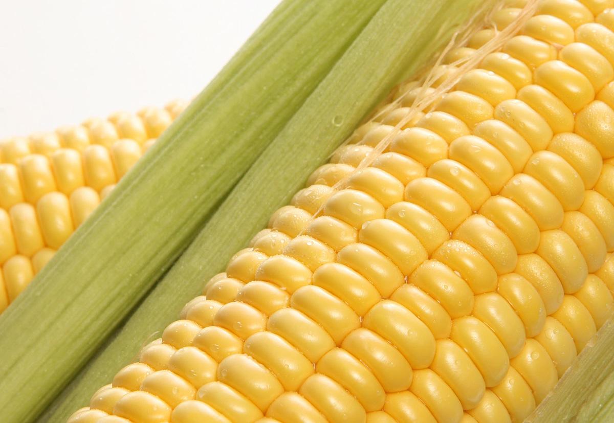 при похудении можно есть кукурузу консервированную
